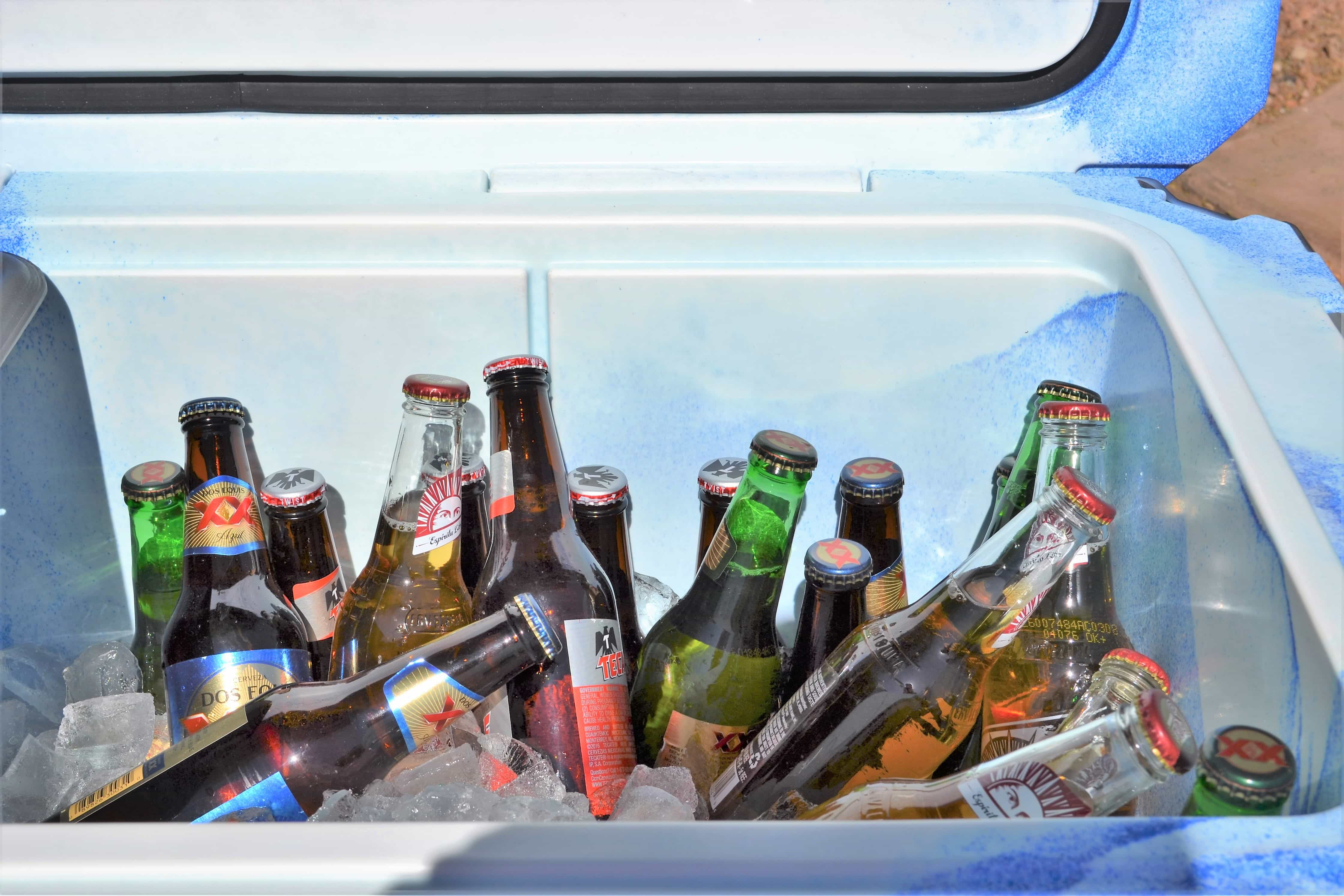 Music Festival Essentials Part 3: Drinks and Coolers - The