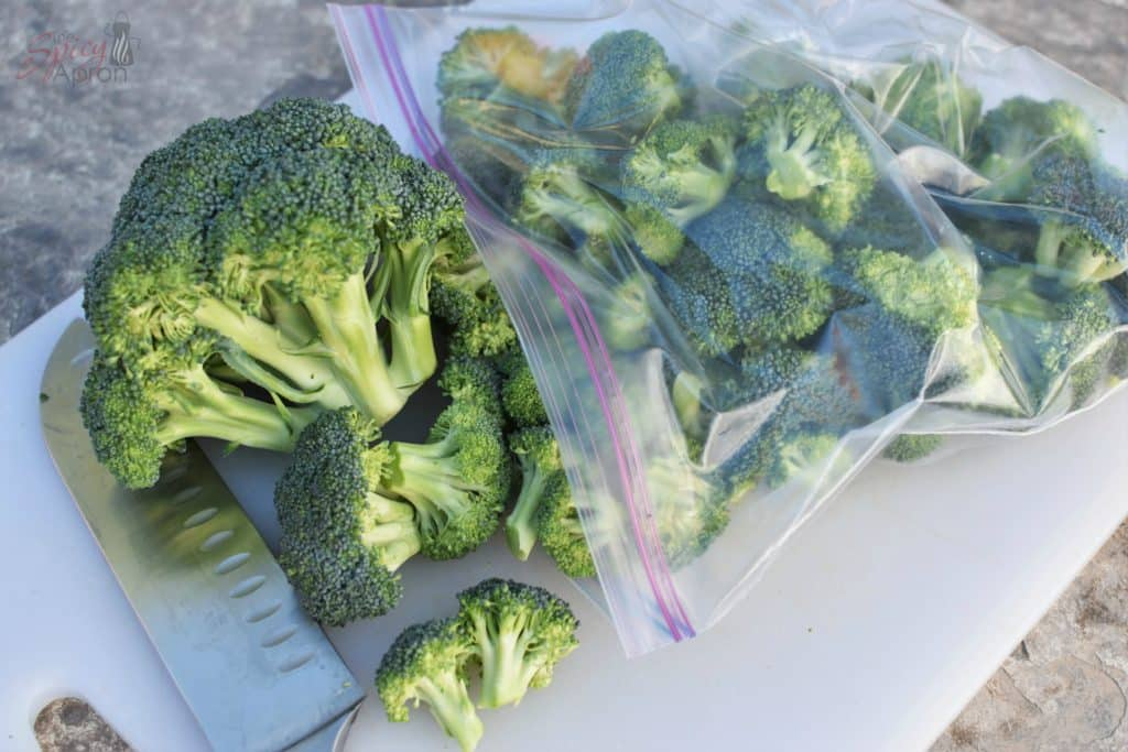 Steamed Broccoli Camping Cut Up with watermark