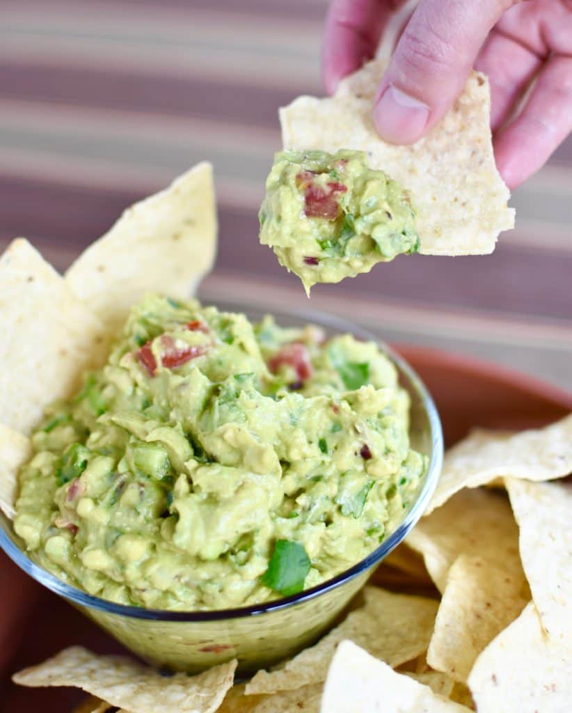 Camping Snacks Guacamole with chip