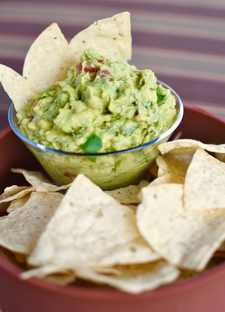 Camping Snacks Guacamole with chips