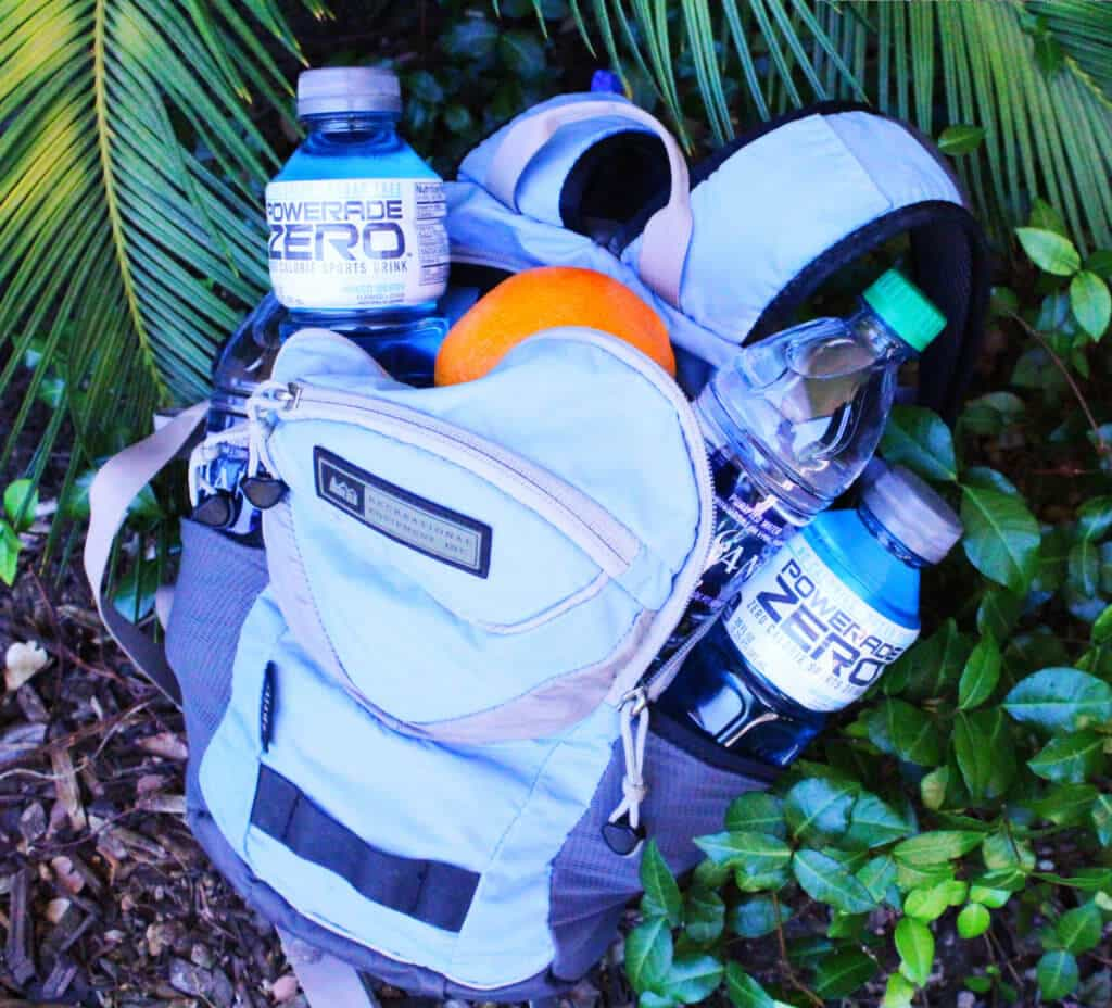 Hydration Powerade Zero in Backpack e