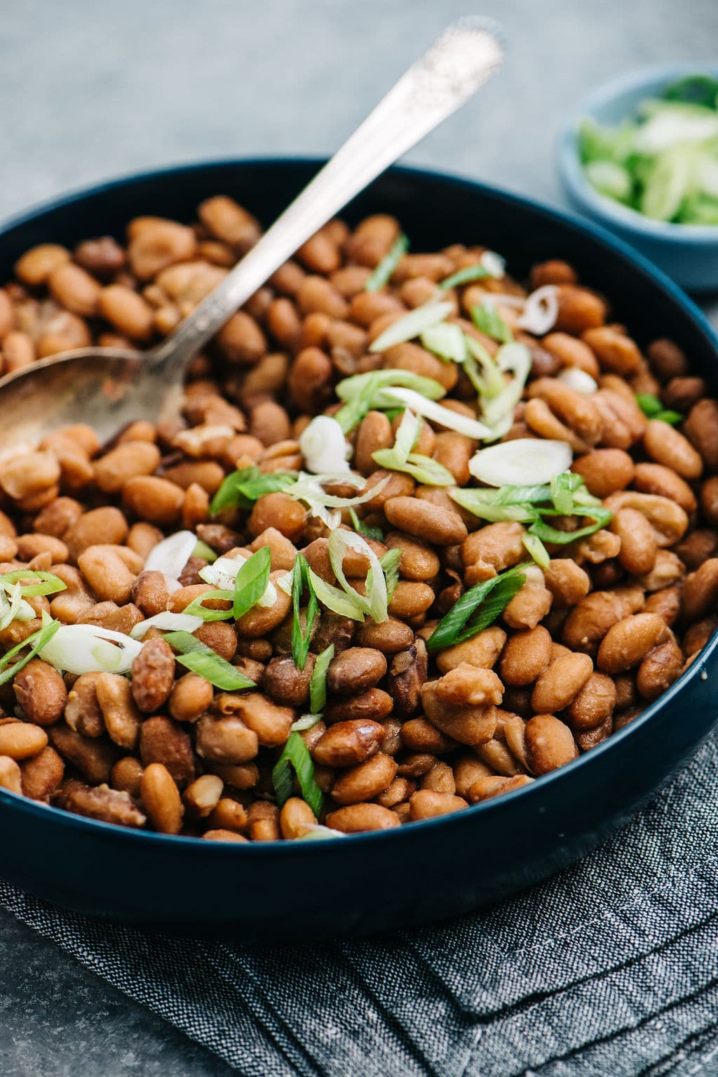 pressure cooker pinto beans in bowl with spoon vertical