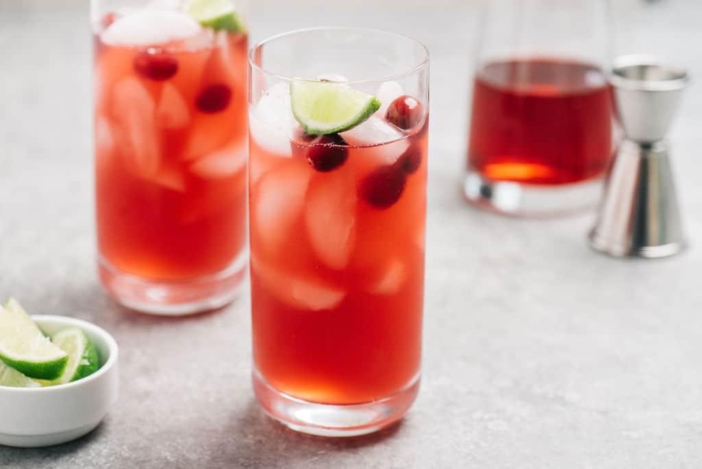 Vodka Cranberry Cocktail 2 glasses horizontal